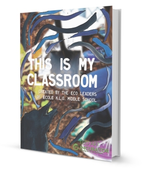 This is my classroom MOCK BOOK PIC