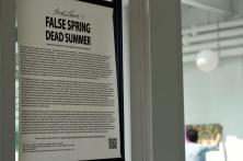 False Spring Dead Summer PRINT - 4