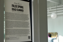 False Spring Dead Summer PRINT - 4